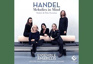 Ensemble Amarillis - Melodies In Mind  - (CD)
