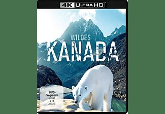 Wildes Kanada 4K Ultra HD Blu-ray