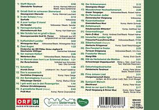 Sumt Diverse Interpreten - Steir.Sänger-& Musikantentreffen 19  - (CD)