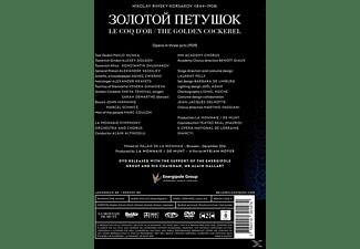 VARIOUS, La Monnaie Symphony Orchestra And Chorus - DER GOLDENE HAHN  - (DVD)