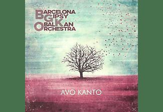 Barcelona Gipsy Balkan Orchestra - Avo Kanto  - (CD)