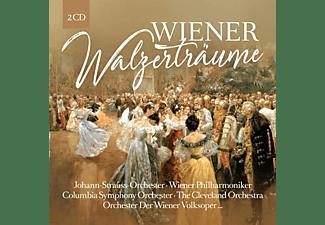 VARIOUS - Wien s Walzerträume  - (CD)