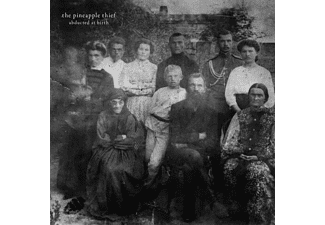 The Pineapple Thief - Abducted At Birth  - (Vinyl)