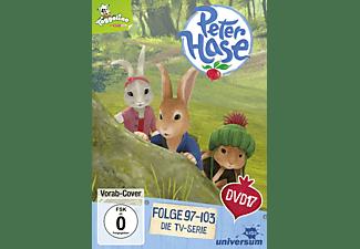 Peter Hase DVD 17 DVD