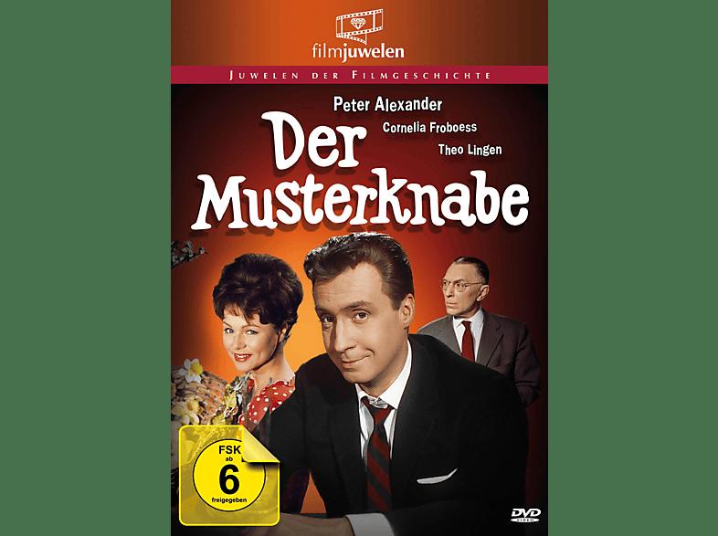 Der Musterknabe [DVD]