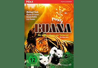 Buana - Die weißen Löwen von Timbavati DVD
