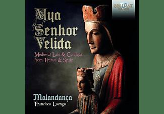 Francisco Luengo, Malandanca - Mya Senhor Velida-Medieval Lais & Cantigas  - (CD)