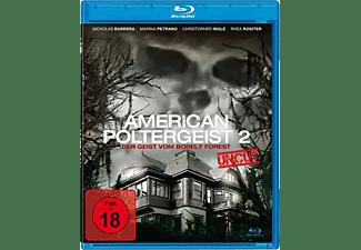 American Poltergeist 2 - Der Geist Vom Borely Forest DVD