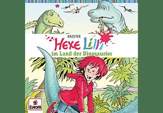 Hexe Lilli - 014/im Land der Dinosaurier  - (CD)