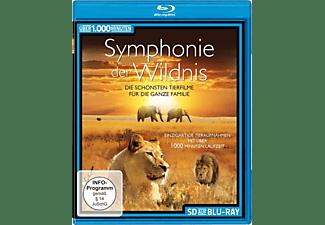 Symphonie der Wildnis Blu-ray