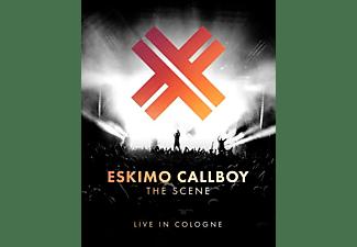 Eskimo Callboy - The Scene-Live in Cologne  - (CD)