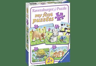 RAVENSBURGER Niedliche Haustiere Puzzle Mehrfarbig