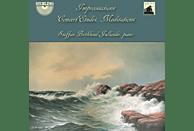 Staffan Biörklund-jullander - Improvisations,Concert Etudes,Meditations [CD]