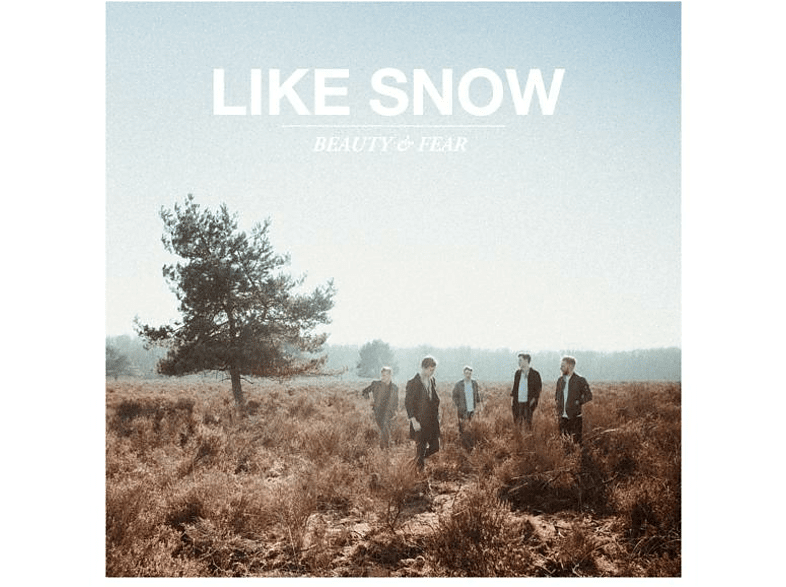 Like Snow - Beauty & Fear [CD]