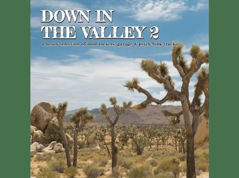 VARIOUS - DOWN IN THE VALLEY 2 [Vinyl]