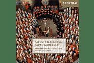 Dufay Ensemble - Reform und Reformation [CD]