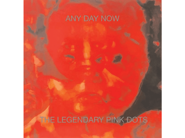 The Legendary Pink Dots - Any Day Now [CD]