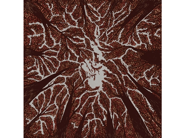 Trash Boat - Crown Shyness (Vinyl) [Vinyl]