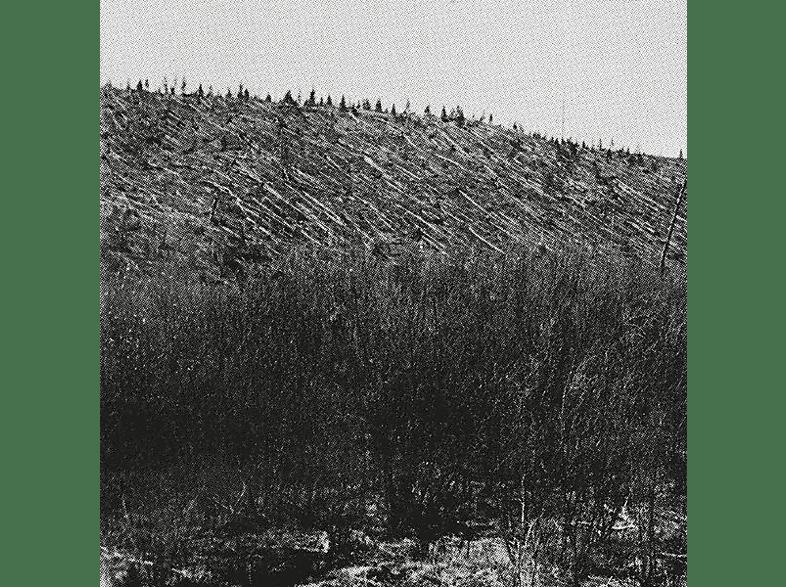 Pina - Lärm [Vinyl]