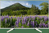 SONY KD-55XF7077 LED TV (Flat, 55 Zoll/139 cm, UHD 4K, SMART TV, Linux)
