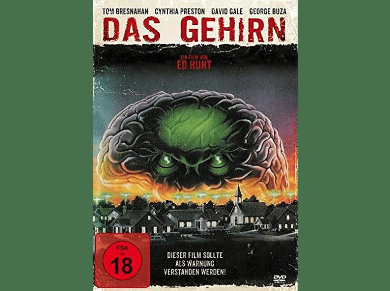 Das Gehirn [DVD]