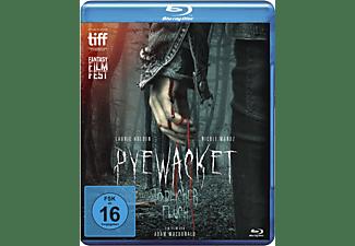Pyewacket - Tödlicher Fluch Blu-ray