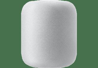 pixelboxx-mss-77728994