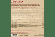 Melanie Hirsch, Maria Bernius, Matthias Helm, Peter Waldner, Vita & Anima - O Anima Mea: Motetten & Instrumentalmusik [CD]
