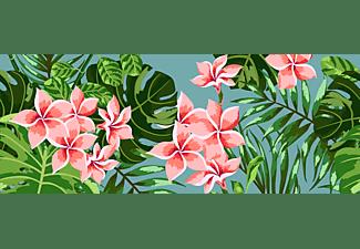 pixelboxx-mss-77784151
