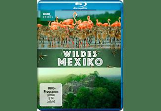 Wildes Mexiko Blu-ray
