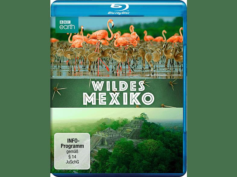 Wildes Mexiko [Blu-ray]