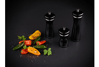 COLE & MASON HS0685P Sherwood Black Gloss Salzmühle