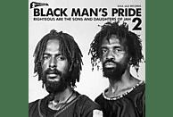 VARIOUS - Black Man's Pride 2 (Studio One) [CD]