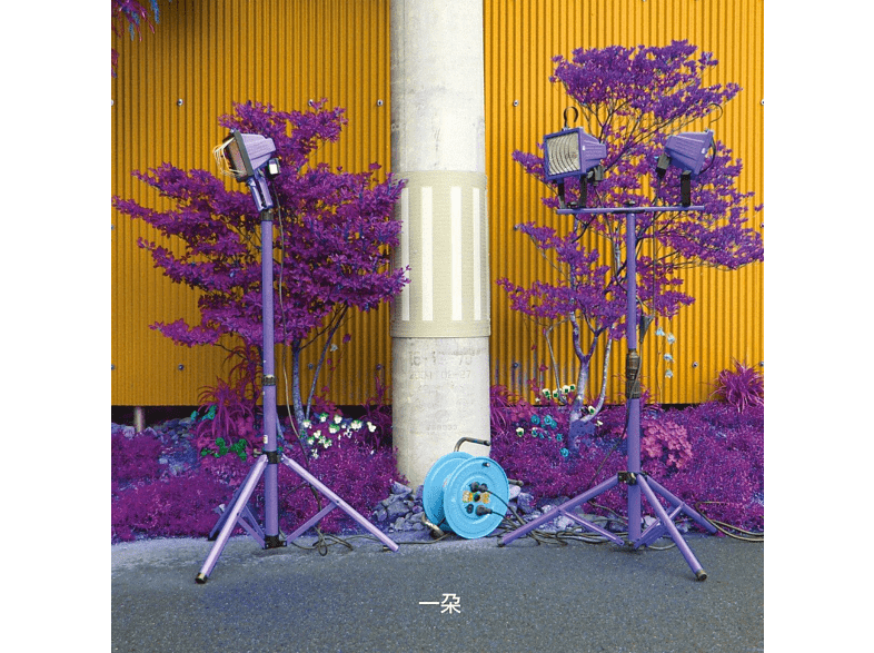 Ishibashi,Eiko/Grey,Darin - Ichida [Vinyl]