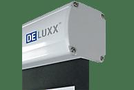 CELEXON DELUXX® Advanced Elegance PLUS 16:9 Mattweiss ISF-Polaro 266 x 149 cm Leinwand
