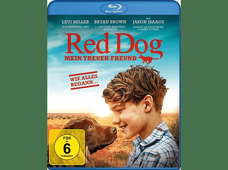 Red Dog - Mein treuer Freund [Blu-ray]