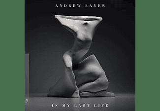 Andrew Bayer - In My Last Life (2LP)  - (Vinyl)