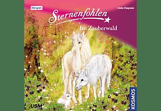 Sternenfohlen - Sternenfohlen: Im Zauberwald (13)  - (CD)