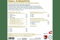Solistenensemble Der Tiroler Barockinstrumentalisten - Small Is Beautiful - Barocke Orchestermusik Für Kammerensemble [CD]