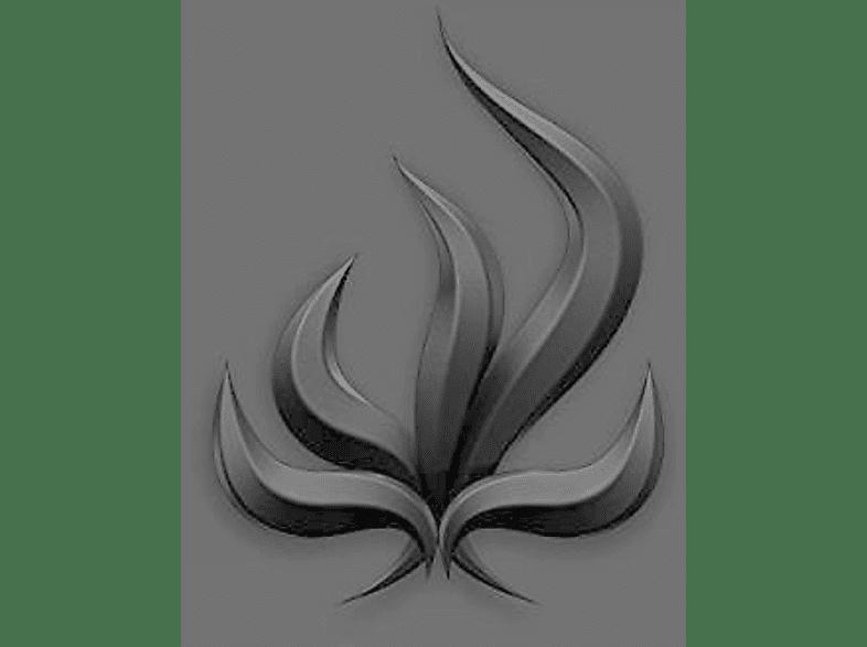 Bury Tomorrow - Black Flame [Vinyl]