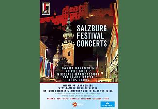 Barenboim/Harnoncourt/Rattle/Boulez - Salzburg Festival Concerts  - (DVD)