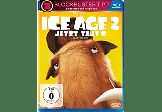 Ice Age 2 - Jetzt taut's Blu-ray