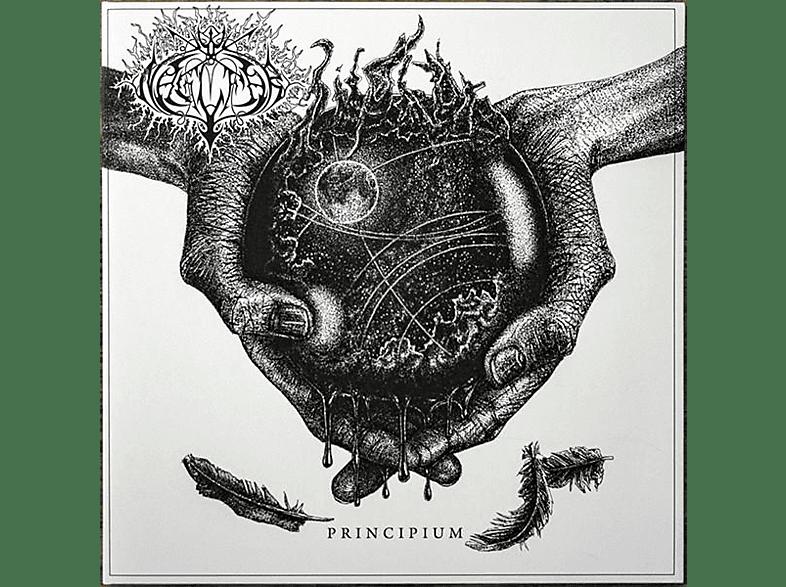 Naglfar - PRINCIPIUM [Vinyl]