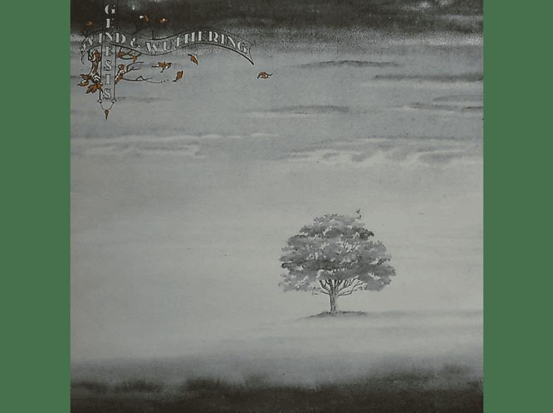 Genesis - Wind And Wuthering [Vinyl]