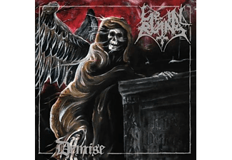Lie In Ruins - Demise - (CD)