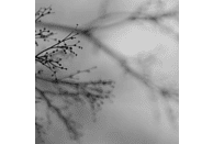Dag Rosenqvist, Emanuele Errante, Dakota Suite - What Matters Most [CD]