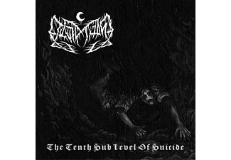 Leviathan - The Tenth Sub Level Of Suicide - (Vinyl)
