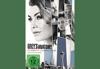 Grey's Anatomy - 14. Staffel DVD
