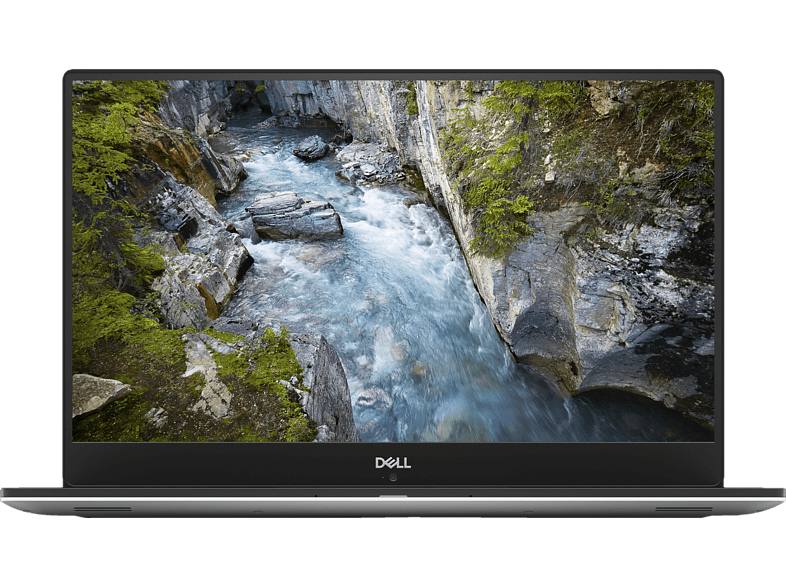 DELL XPS 9570, Gaming Notebook mit 15 Zoll Display, Core™ i9 Prozessor, 16 GB RAM, 512 GB SSD, GeForce® GTX 1050 Ti, Platin, Silber