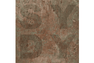 Shiny Darkly - Bronze [Vinyl]